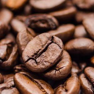 コーヒー豆の保存容器は常温や冷蔵庫で使い分けるべき?