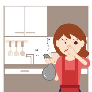 台所に虫が湧く原因は?生ごみを捨てる頻度は?防止策を紹介