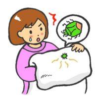 カメムシの臭いの原因と臭い消しの仕方や布団についた時の対処法