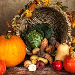 夏場の野菜の保存方法を提案、長持ちさせるコツと保存できる期限は?
