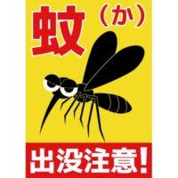 蚊が耳元にくるのはなぜ?羽音が不快な理由や電気を消すとくる謎