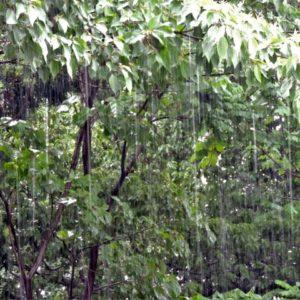 ゲリラ豪雨の前兆現象とは?発生する条件と起こりやすい場所