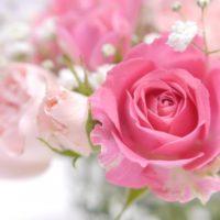 花束の注文の仕方は?大きさの目安とイメージの上手な伝え方