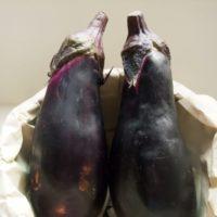 茄子の黒いブツブツは食べれるの?賞味期限は?腐ったらどうなるの?
