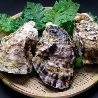 牡蠣の冷凍保存ってどうなの?余った牡蠣を美味しく保存する方法は?